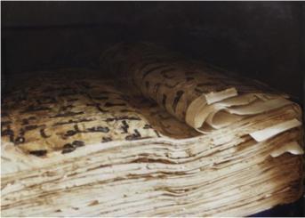 quranmanuscript